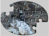 bald eagle jigsaw puzzles