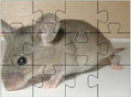Mouse jigsaw puzzles
