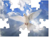 dove jigsaw puzzles